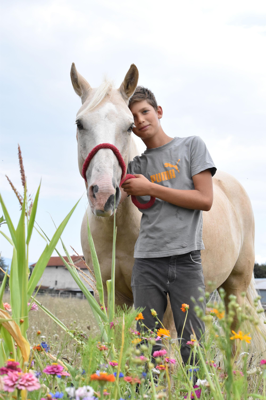 cours d'équitation pour adolescents