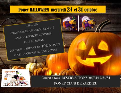 JOURNEE PONEY HALLOWEEN 24 ET 31 OCTOBRE